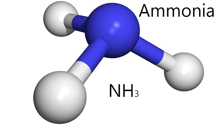 normal ammonia levels and ammonia test new health advisor. Black Bedroom Furniture Sets. Home Design Ideas