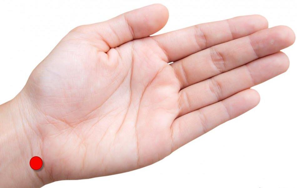 small hand fetish