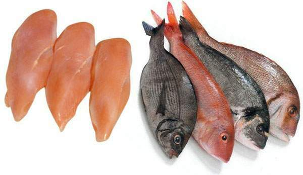 Diet and exercise for a positive blood type new health for Healthiest types of fish