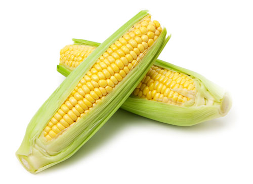 How Many Carbs In Corn On The Cob?