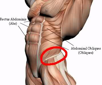 how to deal with oblique muscle strain | new health advisor, Human Body