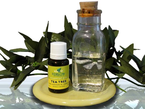 Tea tree oil and sex
