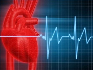 what should i do to stop heart palpitations? | new health advisor, Skeleton