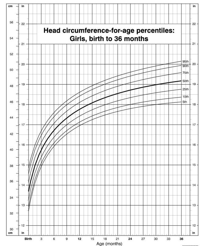 How To Read A Head Circumference Chart New Health Advisor
