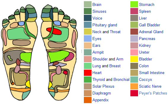 15 pressure points on feet with pictures new health advisor : pressure point diagram - findchart.co