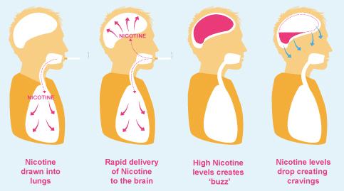 what does nicotine do new health advisor