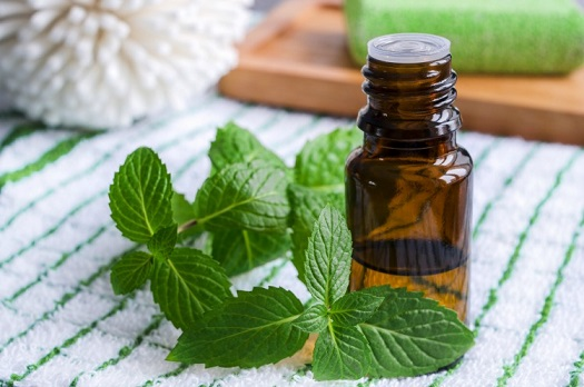 how to use peppermint oil for asthma