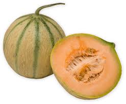 The Earth of India: All About Muskmelon