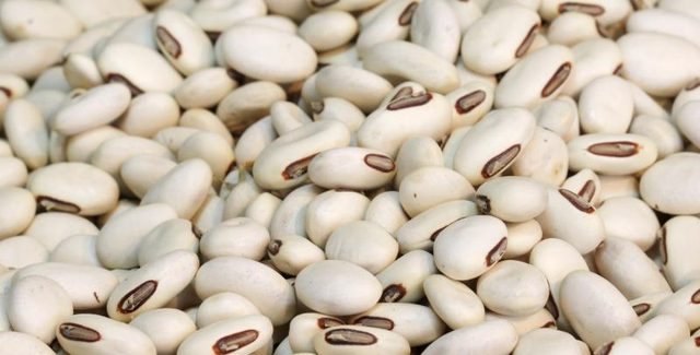 These are small, oval-shaped beans with ability to cook quickly. Also known as Boston beans, pea beans, and the white coco, they are just perfect for dishes ...