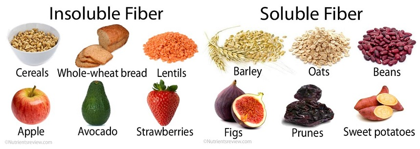 What Foods Have Fiber For Dogs