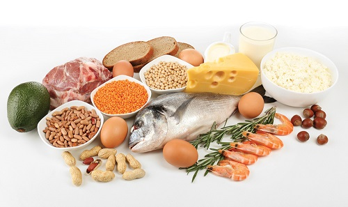 What Protein Foods Are Good For Hair