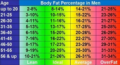 body fat percentage calculator height