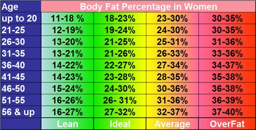 body fat percentage for age