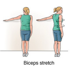 ... Stretch 7 biceps tendonitis exercise help you regain strngth new