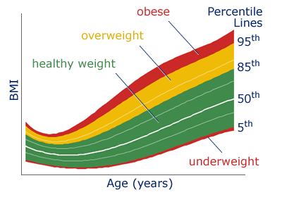 Child Height and Weight Chart, BMI and Growth Chart | New ...