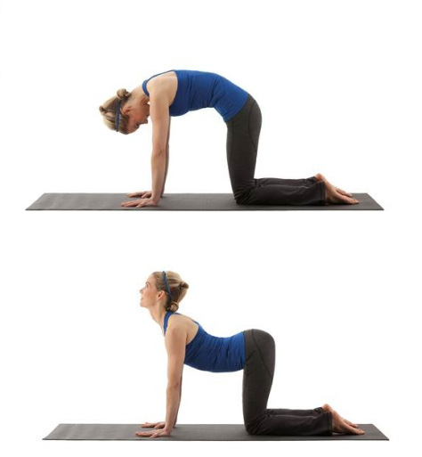 Top 12 Exercises For Lower Back New Health Advisor