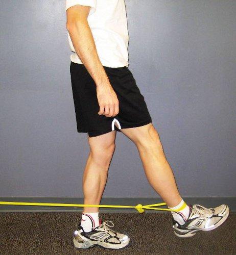 Top 11 Exercises For Hip Flexor New Health Advisor