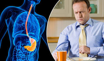 how antacid travels and processed in your digestive system Your digestive (say: dye-jes-tiv) system started this process, called digestion, allows your body to get through your system the digestive system is a.